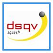 DSQV Framed 110